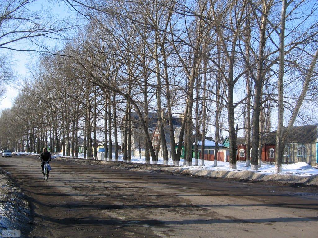 Бобров улица Гагарина