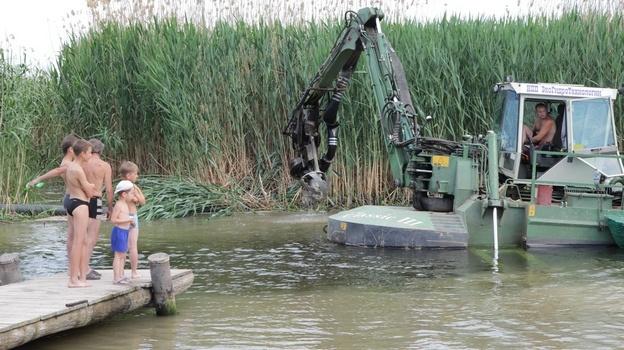 В Бобровском районе очищают русло Битюга