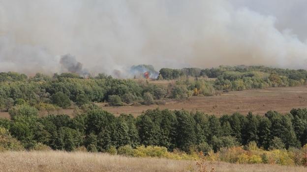 пожар в лесу Бобров