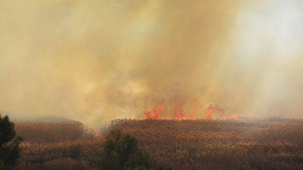 пожар камыша в Боброве