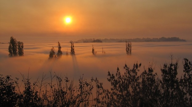 туман из-за пожара в Боброве