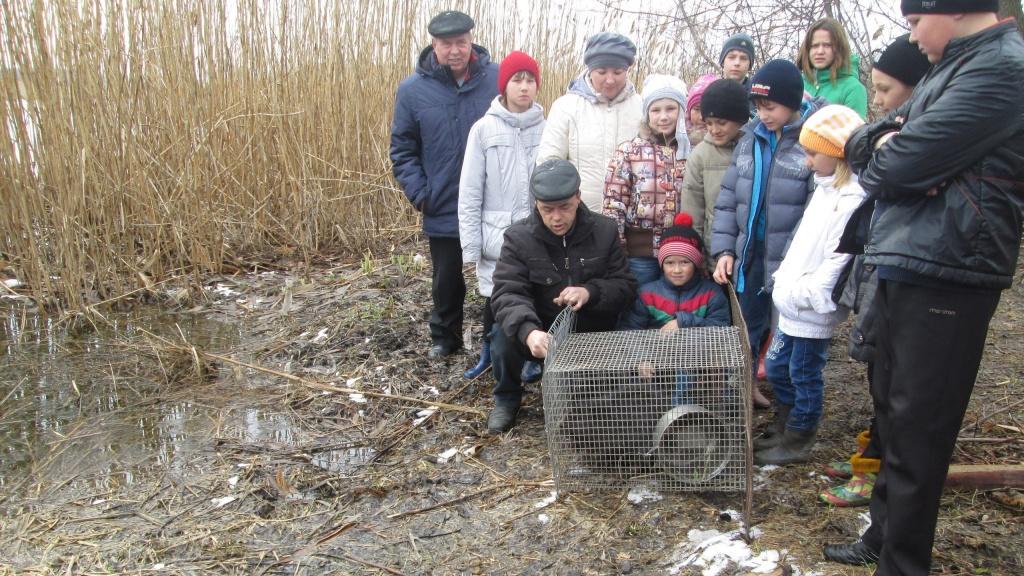 школьники спасли бобра